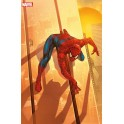 SPIDER-MAN V3 8 VARIANTE